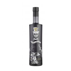 Gastro Gin & Johnnie 45% vol 70 cl